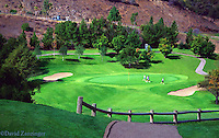Par 3 Elevated Golf Hole, Golf,trees, bunker, green, flag, flag-stick, golf hole, activity. elevated tee