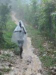 A boy walks through the rain in Mizak, a small village in the south of Haiti.