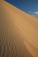 Mongolia  deserto del Gobi dune di sabbia di Khongor,Désert de Gobi Sand Dunes Khongor,Gobi Desert