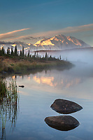 Rocks along the shore of Wonder lake as morning fog rises over the calm water at sunrise, Mt McKinley looms in the distance, Denali National park, Alaska.
