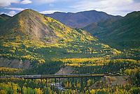 Alaska train on trestle at Denali National Park, Alaska