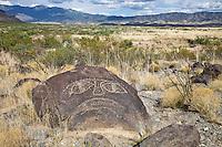 Petroglyphs -Three Rivers Petroglyph Park photos
