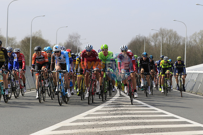 The peloton pass through Mater during the 60th edition of the Record Bank E3 Harelbeke 2017, Flanders, Belgium. 24th March 2017.<br /> Picture: Eoin Clarke | Cyclefile<br /> <br /> <br /> All photos usage must carry mandatory copyright credit (&copy; Cyclefile | Eoin Clarke)