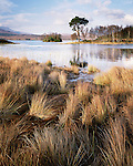 Loch Tulla, Scottish Highlands, in autumn