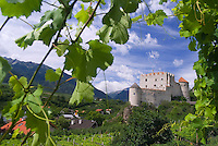 Vinschgau, Val Venosta, South Tyrol, June 2007.  Castelbello. South Tyrol used to be part of Austria until it became part of Italy after WWI. Photo by Frits Meyst/Adenture4ever.com