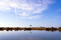 A tranquil morning on Sisal Pond in Everglades National Park, Florida.