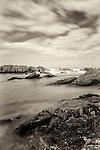 Wild Coastline, Bamburgh, Northumberland, UK