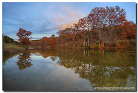 In the Texas Hill Country, Pedernales Falls State Park is a gem. Each November, the cypress along the riverbank turn orange as the cold weather sets in. On this evening, the trees seemed to glow as the sun faded in the western sky.