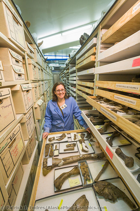 University of Alaska Museum of the North, Earth Sciences Department: Amanda Brennan, student and assistant to the Curator, with museum collection.