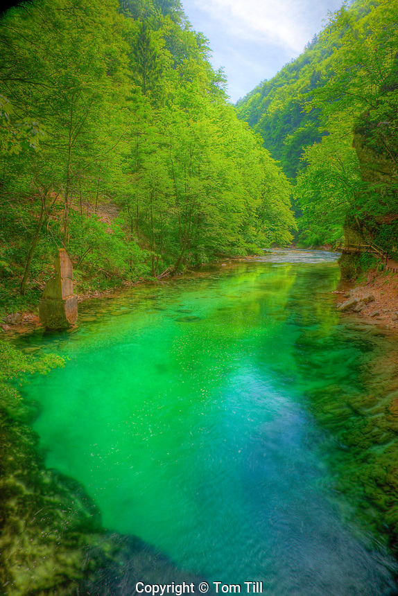Vintgar Gorge,  Triglav National Park, Slovenia,  Narrow gorge with blue-green glacial waters, Near Bled, Julian Alps
