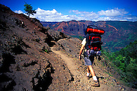 Hiker in Waimea Canyon. Kauai.