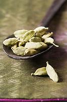 Afrique/Afrique de l'Est/Tanzanie/Zanzibar/Ile Unguja/Stone Town:Graines de Cardamone Zanzibar l'Ile aux épices