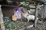Audelina Vasquez Lopez, a Maya Mam woman, greets her pig at her home in Tuixcajchis, a small village in Comitancillo, Guatemala.