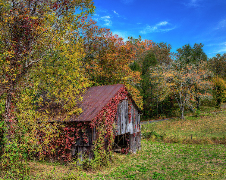 Ortonized HDR image of a barn in Fall.