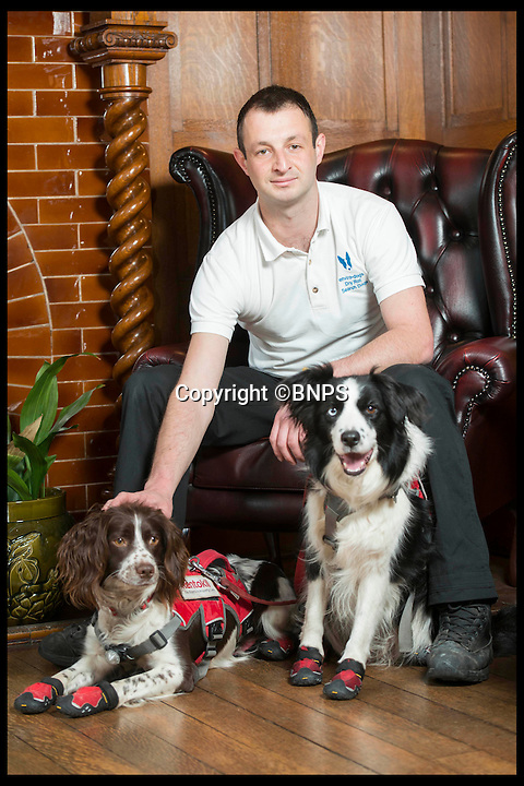 BNPS.co.uk (01202 558833)<br /> Pic: LauraDale/BNPS<br /> <br /> Mark Doggett with his dogs Meg (R) and Jess (L).  At Bantock House Museum.<br /> <br /> New tricks for old dog breeds...<br /> <br /> Enterprising Mark Doggett has come up with a new business idea that's not to be sniffed at...A team of crack pooches that use thier noses to find dry rot in old houses.<br /> <br /> And he now has plans to train the cunning canines to hunt out bed bugs for hotel chains as well.<br /> <br /> Sniffer dogs have been trained to detect the destructive fungi early and in areas humans can't access, meaning they could save people thousands of pounds of expensive damage.<br /> <br /> There are even plans to train the dogs to detect bed bugs, which could prove a huge help to hotels, hospitals and boarding schools.<br /> <br /> Mark Doggett, 30, started his business Enviro-dogs last year and it is the only company in the country people can hire to check properties for dry rot.