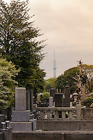 """Yanaka cemetery with the Tokyo Sky Tree in the background, Yanaka, Tokyo, Japan, April 19, 2012. Yanaka is part of Tokyo's """"shitamachi"""" historic working class wards. Recently it has become popular with Japanese and foreign tourists for its many temples, shops, restaurants and relaxed atmosphere."""