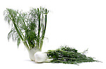 Fennel still life.