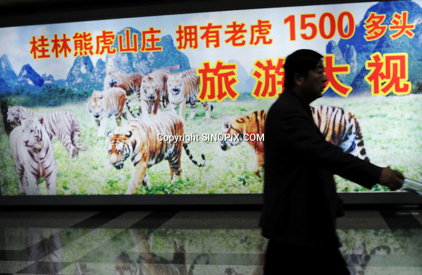 an advert for Xiongshen Tiger and Bear Park in Guilin airport, China. The park has farmed 1500 tigers and sells an illegal tiger bone wine to tourists that visit the park.