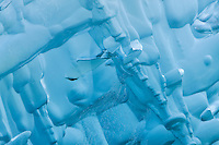 Formed by tremendous pressure, ice patterns create an abstract on this iceberg calved from Dawes Glacier in Endicott Arm fjord in the Inside Passage of Southeast Alaska. Summer. Morning.