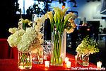 Damselfly Designs at Grand Prix.Beautiful Bar Mitzvah Decor.