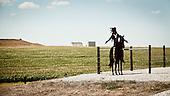 South West Kansas, USA, August 2011:.Metal cut out of an Indian on a horse in front of genetically modified corn field monoculture. Landscape has changed dramatically in some parts of this previously Cheyenne territory..(Photo by Piotr Malecki / Napo Images)..Pd-Zach Kansas, Stany Zjednoczone, Sierpien 2011:.Figura indianina na koniu zrobiona z wycietej blachy stoi przed polem genetycznie modyfikowanej kukurydzy. Krajobraz zmienil sie bardzo w niektorych czesciach tego wczesniejszego terytorium Szejenow..Fot: Piotr Malecki / Napo Images.