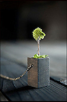 BNPS.co.uk (01202 558833).Pic: Evan Lentz/BNPS..***Please Use Full Byline***..Eco-designer Evan Lentz has created a new range of jewell-tree - necklaces that have a tiny plant as the centrepiece...Evan, 28, crafts a small wooden container that connects to a chain and can be filled with small amounts of grass or moss...The green plant-life has been dried and so doesn't require any maintenance and doesn't grow...The eye-catching jewellery provides a natural, sustainable.eco-friendly and cheaper alternative to regular beads and pendants found on chains...Evan, from San Diego, California, is selling his range of eco-friendly jewellery online for up to 20 pounds an item.