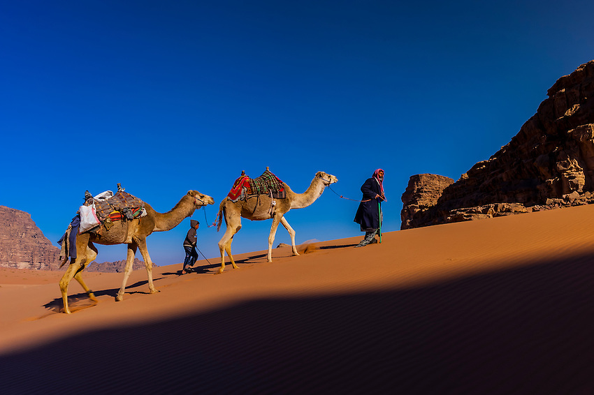 Bedouin man and son crossing a sand dune in the Arabian Desert with their camels, Wadi Rum, Jordan.