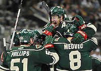 Iowa Wild players celebrate the win after an AHL hockey game against the San Antonio Rampage, Saturday, Jan. 25, 2014, in San Antonio. Iowa won 2-1 in overtime. (Darren Abate/AHL)