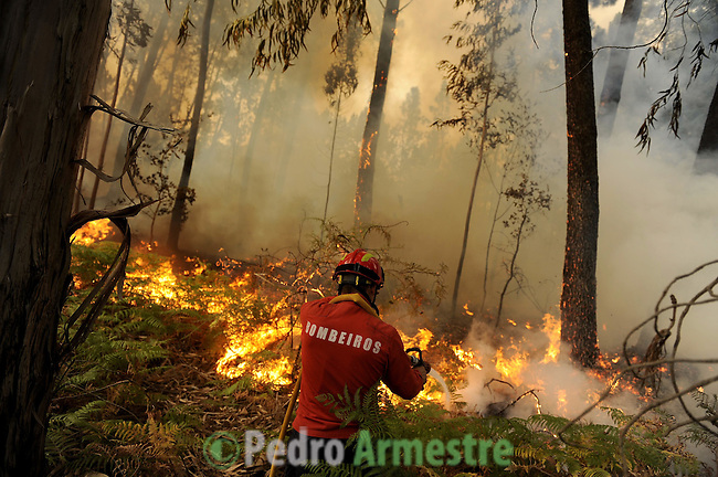 Members of the fire brigade are seen around the area where a fire burns, in Salvador nord of Portugal, on august 09, 2010. (c) Pedro ARMESTRE