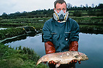 An environment agency wokred holds a dead trout on the  River Kennet in one of Britain's worst ever incidents of river poisoning which killed more than three million fish.<br /> Scientists from the Agency say carryed out door-to-door enquiries at farms and businesses around the village of Little Bedwyn, Wiltshire, <br /> It is thought contaminants entered the river near the village and spread downriver to the Berkshire Trout Farm, near Hungerford, wiping out its entire stock of more than 150 tonnes of trout .<br /> The Environment Agency's area manager Stu Darby said: &quot;This is one of the largest incidents of its type in the region to date