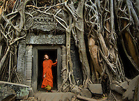Monks at Angkor, 2006