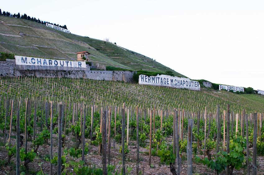 vineyard domaine m chapoutier hermitage rhone france