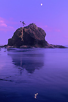 769300081 a half moon sets above a large sea stack on a peaceful evening at second beach along the pacific ocean coast of northern washington state