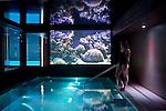 Indoor Pool 765