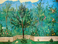 Painted Domestic Pine in the Roman fresco of a garden from Villa Livia (Early first century AD), Rome, Livia was the wife of Roman emperor Augustus.  Museo Nazionale Romano ( National Roman Museum), Rome, Italy.<br /> Trees and shrubs had symbolic importance to the Romans as can be see by the plants used in the trompe-l&rsquo;&oelig;il frescoes from the Villa Livia, Rome, which contains plants linked to the deities particularily venerated by Augustus and Livia. <br /> <br /> Domestic pine: present in the mystery rites of Cybele, Attis and Dionysus. Laurel: sacred to Apollo, symbol of triumph, it recalls the famous prodigy associated with Livia Drusilla.