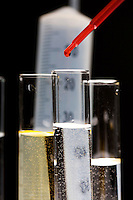Pipetting red liquid into test tubes. Royalty Free