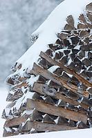 Europe/Allemagne/Bade-Würrtemberg/Forêt Noire/Env de Münstertal: Neige sur la Forêt Noire - Détail tas de bois