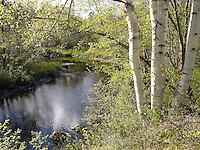 Ashuelot River in Spring, New Hampshire