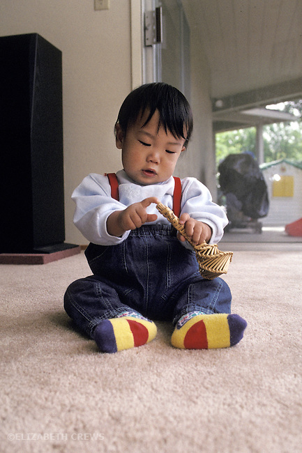 Palo Alto, CA Japanese baby age one, studying shape and texture of rattle