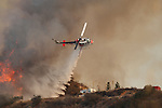 Californian Wildfires 2014