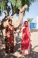 Nitu and Suki (in pink) (not their real names), stand with their camel in Jhaju village, Bikaner, Rajasthan, India on 4th October 2012. Now 18, Nitu was married off at age 10 to a boy of around the same age, but only went to live with her in-laws when she was 12, after she had finished studying up to class 6. The three sisters, aged 10, 12, and 15 were married off on the same day by their maternal grandfather while their father was hospitalized. She was abused by her young husband and in-laws so her father took her back after hearing that her husband, who works in a brick kiln, was an alcoholic and was doing drugs and crime. She had only spent a few days at her husband's house at that time. Her father (now out of the hospital) has said that she will only be allowed to return to her husband's house if he changes his ways but so far, the negotiations are still underway. Her sister, Suki, now age 20, was married off at age 12 but only went to live with her husband when she was 14. Her husband died three years after she moved in, leaving her with a daughter, now 6, and a son, now 4. She has no parents-in-laws and thus returned to her parents house after being widowed because her brother-in-law, who had become the head of the family after his brother's death, had refused to allow Suki to inherit her deceased husband's fair share of agriculture land. Although Suki's father wants her to remarry, she refuses to, hoping instead to be able to support her family through embroidery and tailoring work. The family also makes hand-loom cotton to subsidize their collective household income. Photo by Suzanne Lee for PLAN UK