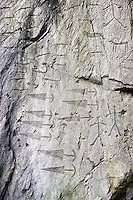 Prehistoric  petroglyphs, rock carvings, of trangular daggers with semi circular pomels in an ancient sanctuary, carved by the the ancient Camuni people in the Copper Age around the 3rd milleneum BC  , Massi dei Cemmo Archaeological Site, Capo di Ponti, Lombardy Italy