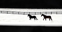 Joe Imel/Daily News.A pair of horses run in a snow-covered pasture off US 31-W Saturday. Snow moved into southcentral Kentucky nearly a half day later than expected but dumping about 6 inches in some areas before trailing off..