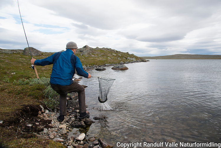 Mann hover røye i vann på Laksefjordvidda. ---- Man landing char.