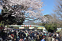 April 1, 2011, Tokyo, Japan - Hundreds of people wait in line for hours before the gate to open at Ueno Zoo, where two new giant pandas make their debut to the public on Friday, April 1, 2011. The pandas - a male named Ri Ri and a female named Shin Shin - were supposed to make their debut on March 22 after arriving from China on Feb. 21, 18 days before a magnitude 9.0 earthquake and tsunami that devastated northeastern Japan. The zoo reopened today after two weeks of closure as aftershocks from the quake. Both pandas also have experienced a magnitude 7.8 quake that struck Sichuan province when they were housed at China Giant Panda Protection and Research Center in May 2008. (Photo by Kaku Kurita/AFLO) [3618] -mis-