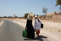 Morocco - Tidzi - Members from the Ajddigue carry the argan oil to the market in order to sell it. The argan oil is extracted by local women in the same traditional way that was passed on by their ancestors. After collecting the fallen fruits from the trees, women crush their nuts in order to extract the kernels, which are then passed through a millstone and grinded. The oil is extracted by adding water and pressing the resulting mash. It takes around 30 kilos of fruits to make one liter of argan.