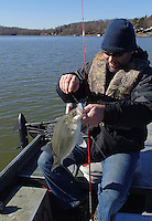 NWA Democrat-Gazette/FLIP PUTTHOFF<br /> Jon Stein, fisheries biologist with the Arkansas Game and Fish Commission, catches a white bass while trolling Dec. 4, 2015 in the Monte Ne area of Beaver Lake. Stein used a silver Wally Diver lure that imitates a large minnow or shad.