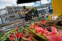 A hand cart full of flowers is seen in the flower market of Bogota, Colombia, 10 July 2010. Colombia is one of the world leaders in cut flower industry. The advantage of the moderate sunny climate, very cheap labor force in combination with the absence of social laws and environmental regulations have created perfect conditions for the cut flower production. Flower growing is very fragile and necessarily depends on irrigation and chemical maintenance, provided by highly toxic pesticides. About 110.000 workers in Colombia, working mainly for living minimum wage, keep the floral industry going and saturate the market generated by consumerist culture the US, Canada and Europe.