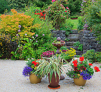 Vashon-Maury Island, WA<br /> Driscoll garden, flowering pots and containers planted in a gravel courtyard with a stone wall and stairway