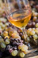 Vignoble de Gaillac - Gaillac vineyard
